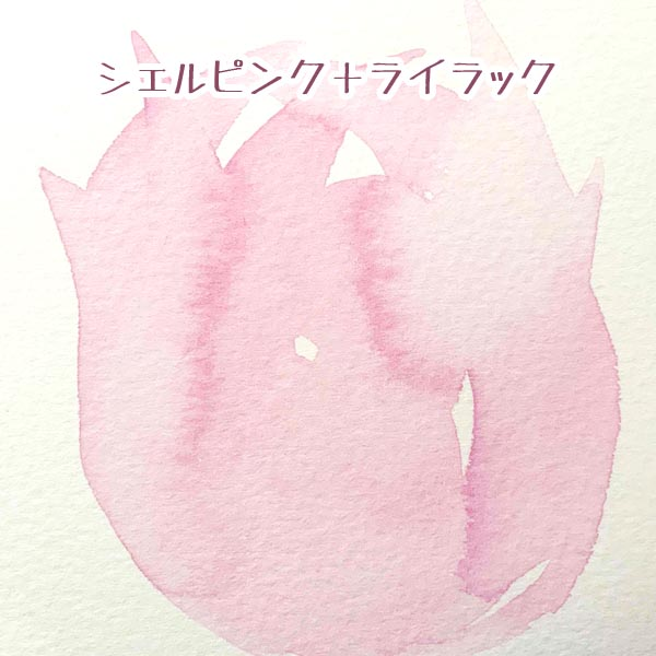 image507