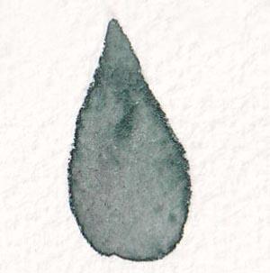 image546